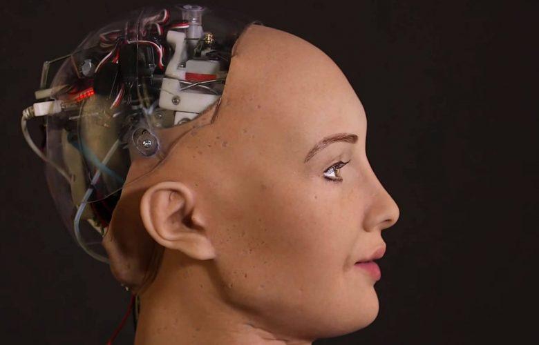 Il robot Sophia (Hanson Robotics)