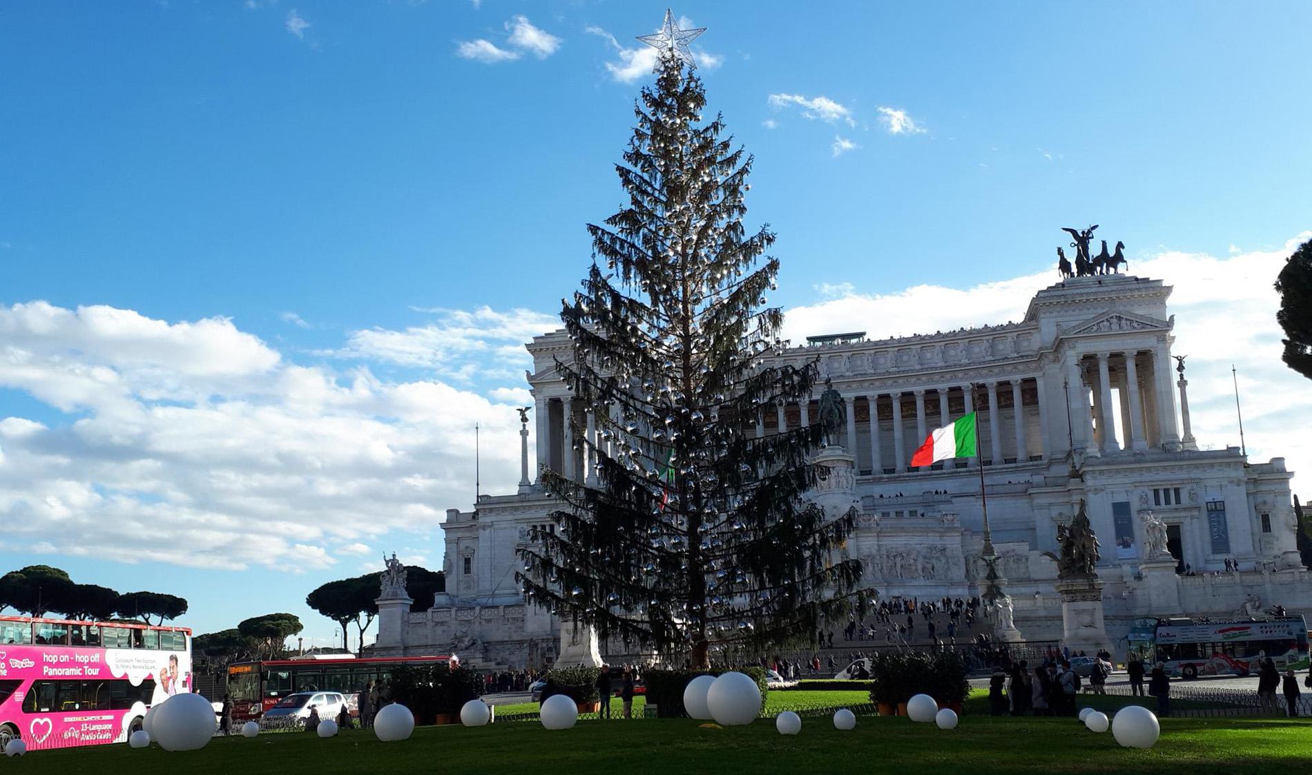 Spelacchio, l'albero di Natale nella Capitale