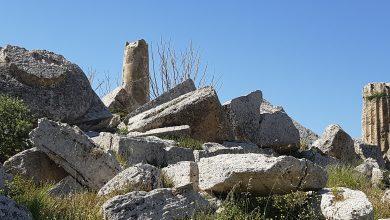 Tempio G di Selinunte (Foto Ernesto Fichera)