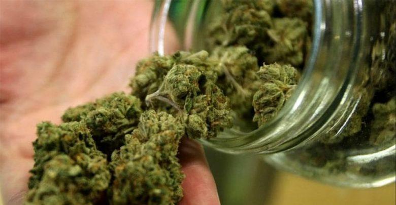 Photo of Cannabis light, il Consiglio Superiore di Sanità dice no alla vendita