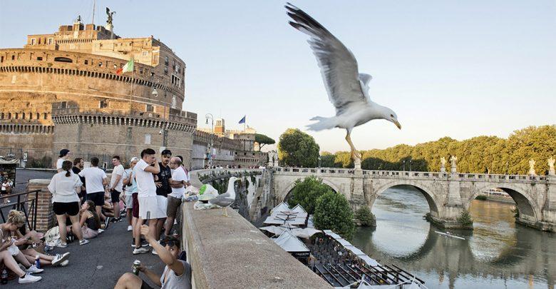 Roma sporca NYT