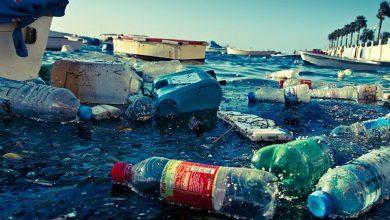 Photo of L'Europa verso lo stop alla plastica monouso