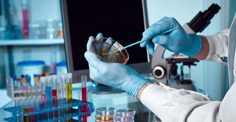 Papilloma virus analisi laboratorio