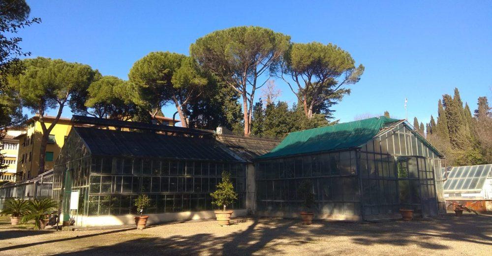 Ex Istituto Agronomico per l'Oltremare a Firenze