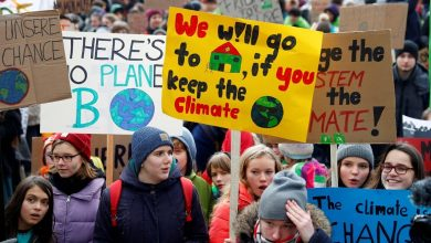 Photo of Fridays for Future e la questione educativa