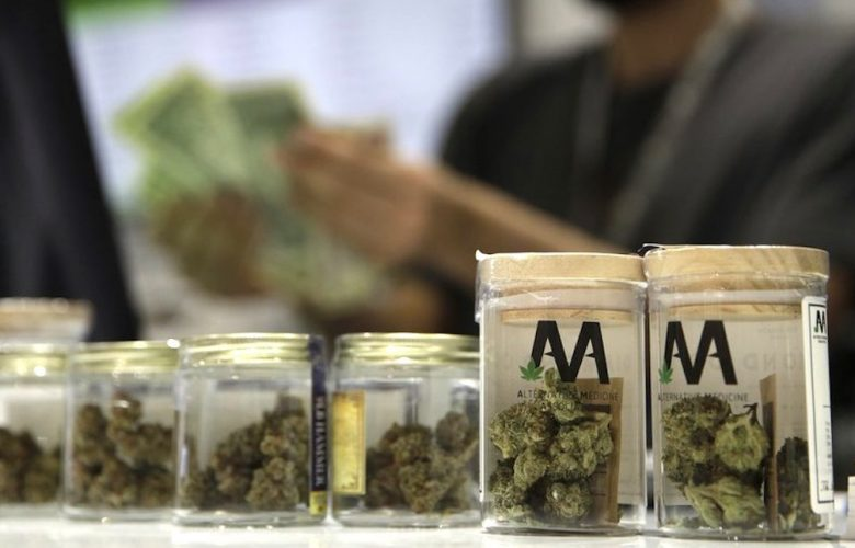 Cannabis light, cosa cambia dopo lo stop della Cassazione