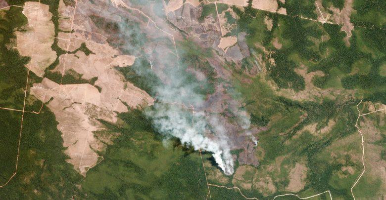 Photo of Amazzonia, Bolsonaro rifiuta 20 milioni di dollari dal G7
