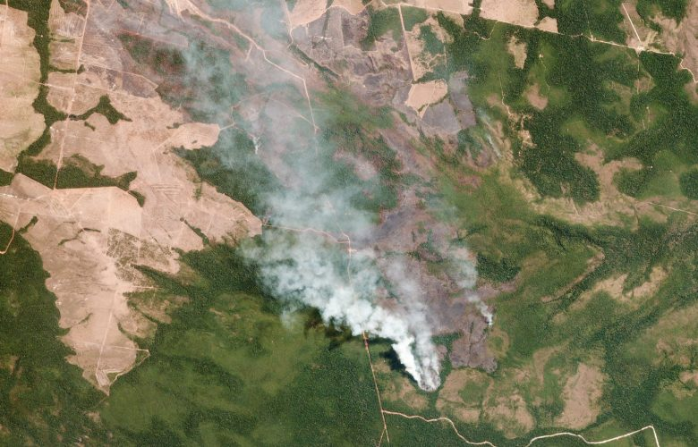 Amazzonia, Bolsonaro rifiuta 20 milioni di aiuti dal G7