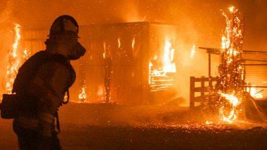 Photo of La California brucia, oltre 200mila persone evacuate