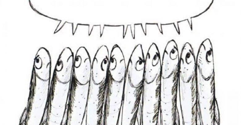 """Photo of Le """"sardine"""" diventano un marchio registrato in Ue"""