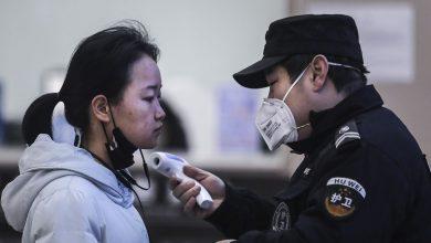 Photo of Dai pipistrelli ai serpenti: così il virus cinese è arrivato fino all'uomo
