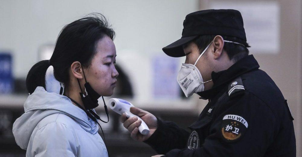 Dai pipistrelli ai serpenti: così il virus cinese è arrivato fino all'uomo