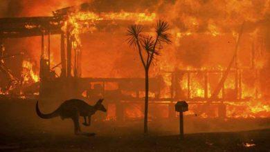 Photo of I cambiamenti climatici causeranno la prossima crisi finanziaria