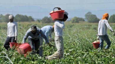 Photo of Come funzionerà la regolarizzazione dei migranti