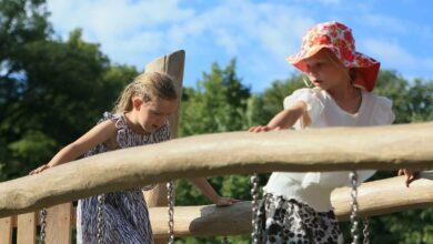 Photo of La via della Danimarca alla riapertura delle scuole: lezioni allo zoo e allo stadio