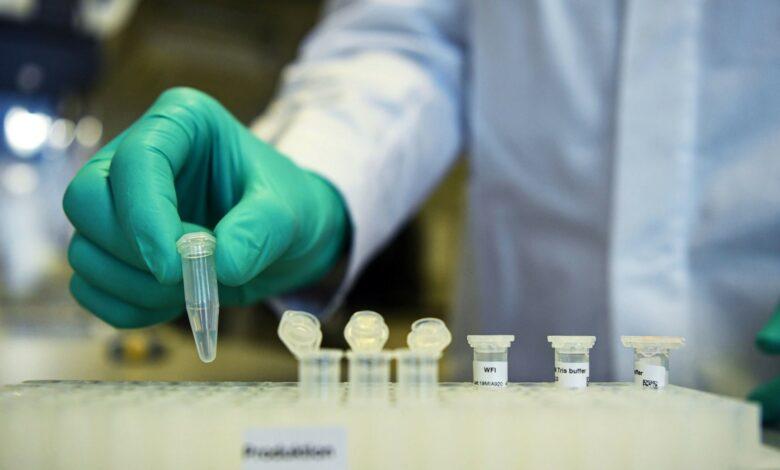Photo of Coronavirus, in Italia prevale il ceppo che proviene dalla Germania